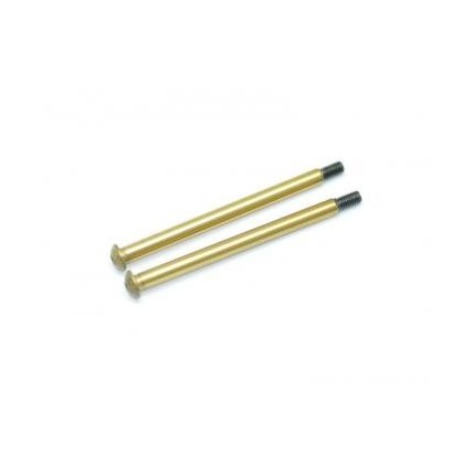 پین تیتانیوم 600491 - Hingepin RR outer TiN coated
